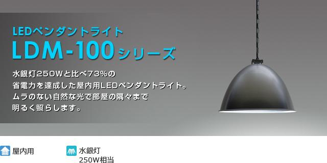 LEDペンダントライト LDM100シリーズ