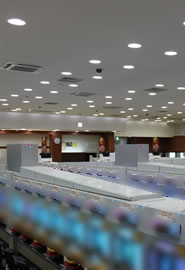 LEDダウンライトLDM-100シリーズ遊技施設導入例